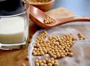 Soybeans soy milk