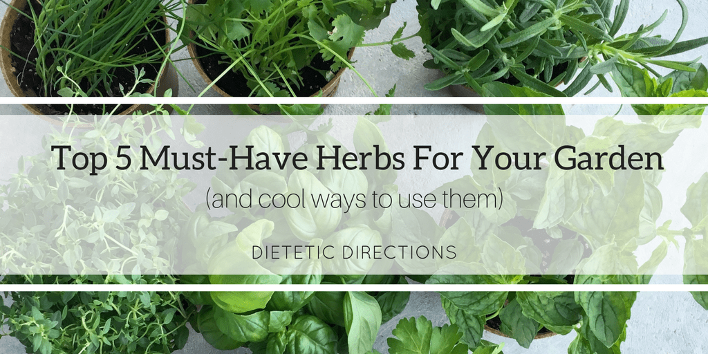 Top 5 Must-Have Herbs For Your Garden